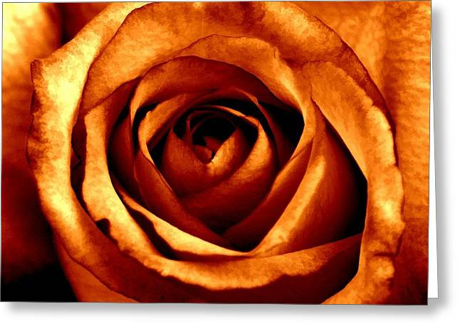 Orange Crush Greeting Card by Peggy Hughes