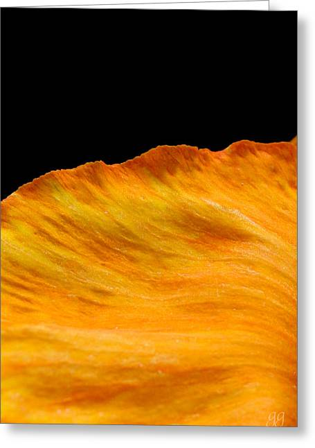 Orange Edge Greeting Card