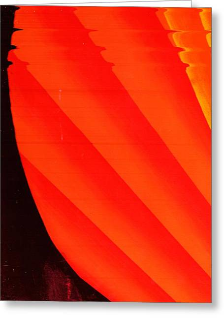 Orange Fan Greeting Card by Anne-Elizabeth Whiteway
