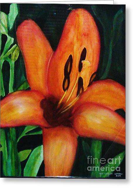 Beautiful Lily Flower Greeting Card