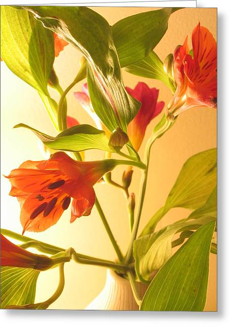 Orange Fresias Greeting Card