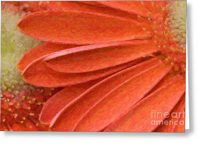Orange Gerber Daisy Painting Greeting Card
