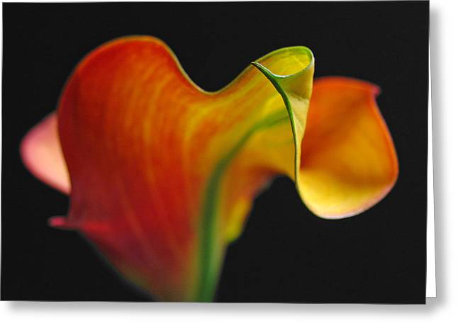 Orange Goddess Greeting Card by Juergen Roth
