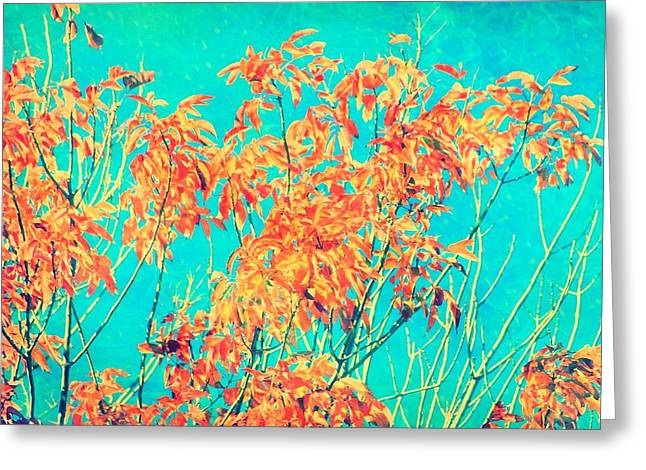 Orange Leaves And Turquoise Sky  Greeting Card