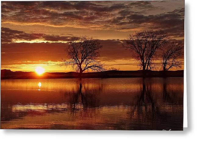 Orange Morning Greeting Card