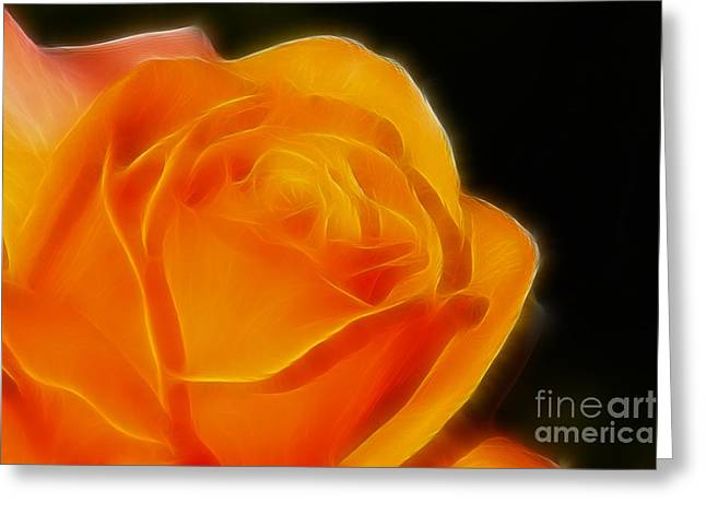 Orange Rose 6308 Greeting Card by Gary Gingrich Galleries
