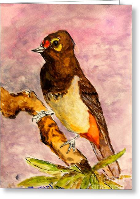 Orange-spotted Bulbul Greeting Card