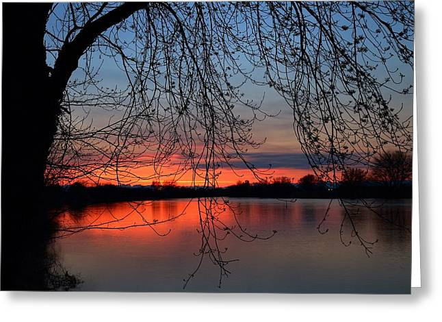 Greeting Card featuring the photograph Orange Sunset by Lynn Hopwood