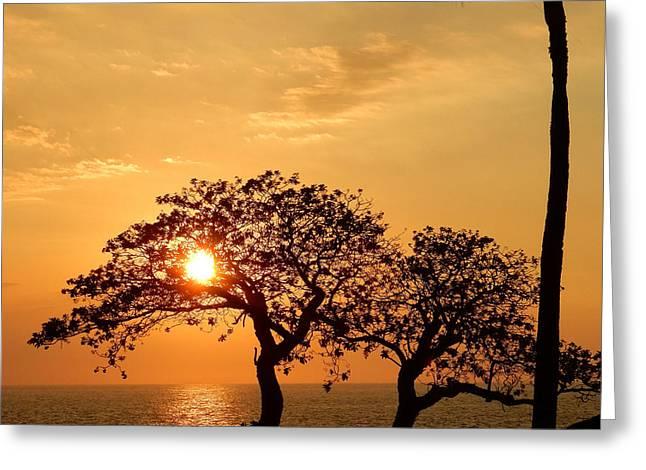 Orange Sunset Greeting Card by Pamela Walton