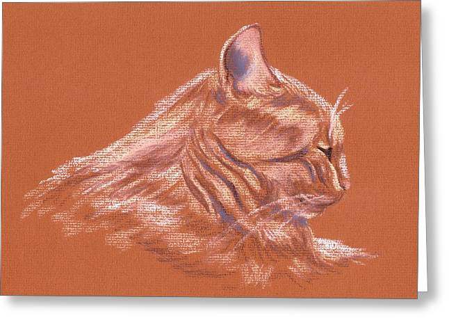 Orange Tabby Cat In Profile Greeting Card by MM Anderson