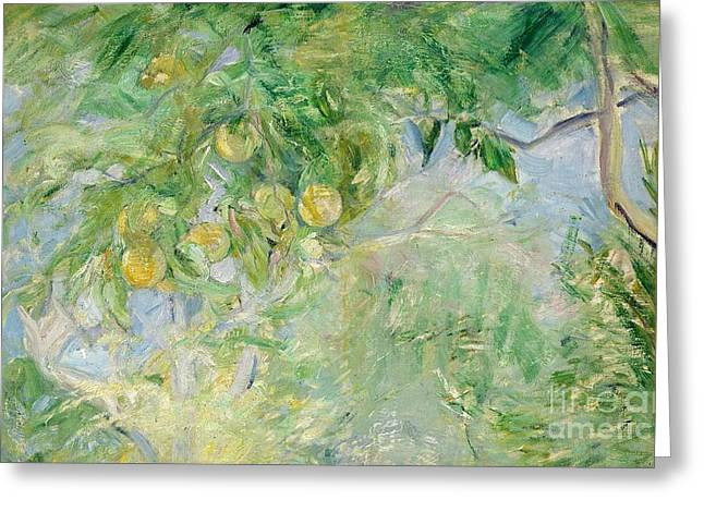 Orange Tree Branches Greeting Card by Berthe Morisot