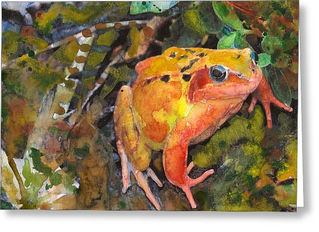 Orange Tree Frog Greeting Card by Susan Powell