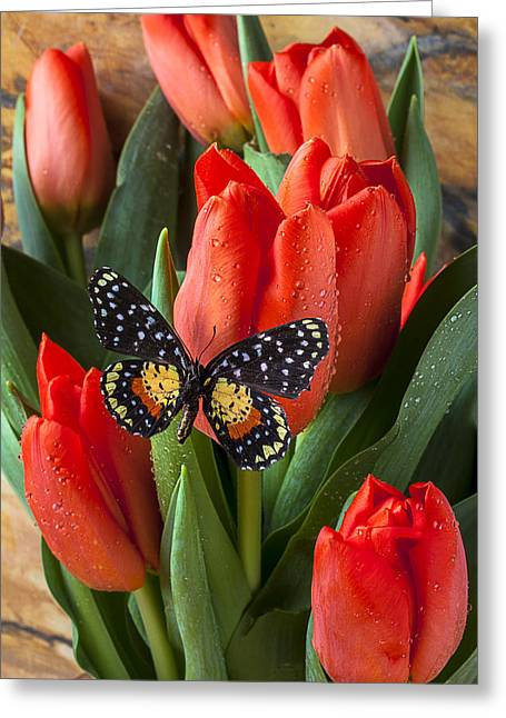 Orange Tulips And Butterfly Greeting Card by Garry Gay