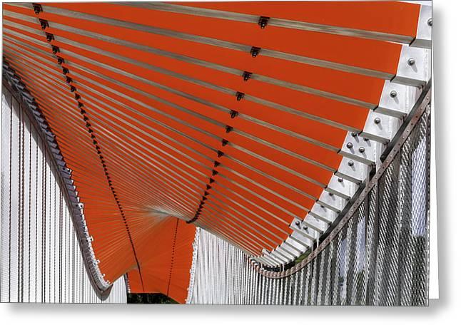 Orange Undulations Photograph By Lynn Palmer