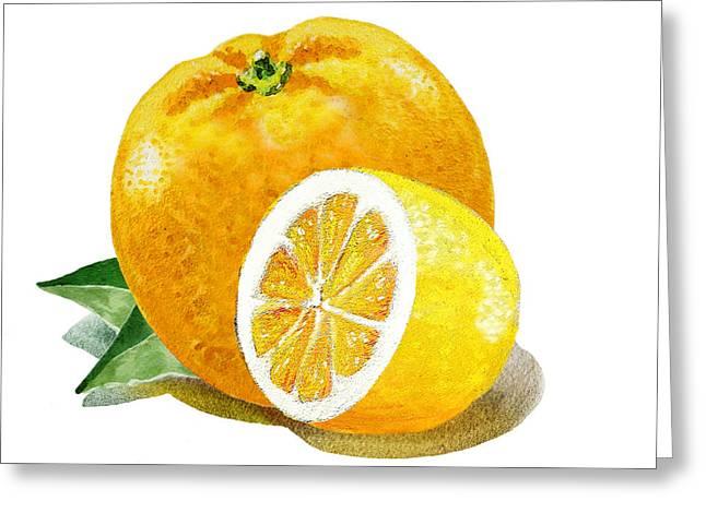 Orange With Half Lemon Greeting Card