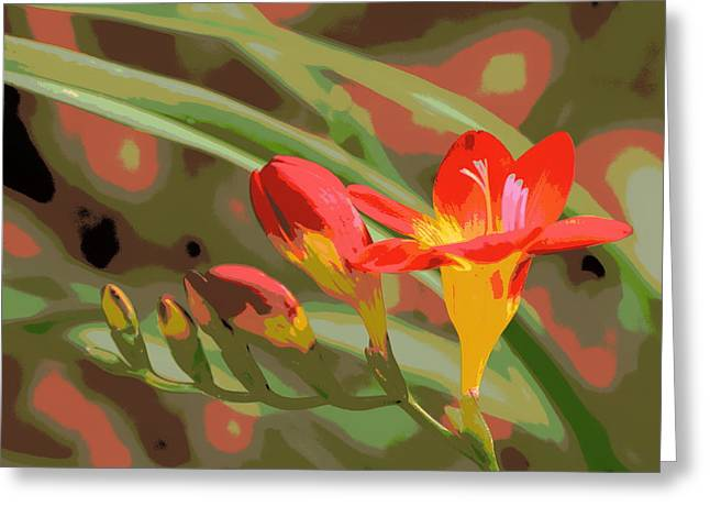 Orange Yellow Freesia 1 Greeting Card by Sheri McLeroy