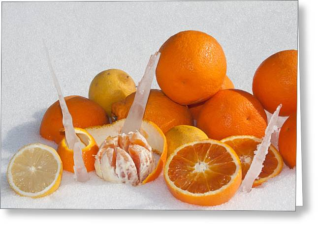 Oranges And Lemons On Snow Greeting Card