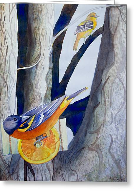 Oranges And Orioles Greeting Card