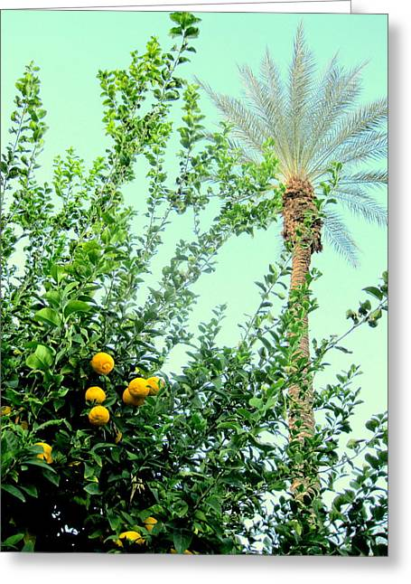 Oranges And Palm Trees Greeting Card