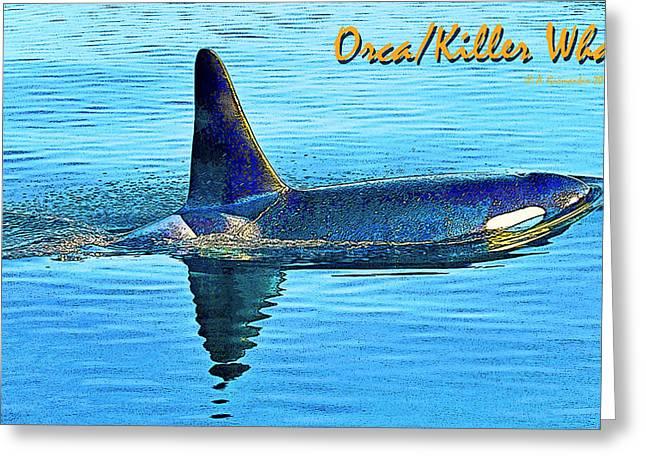 Orca Killer Whale Digital Art Greeting Card by A Gurmankin