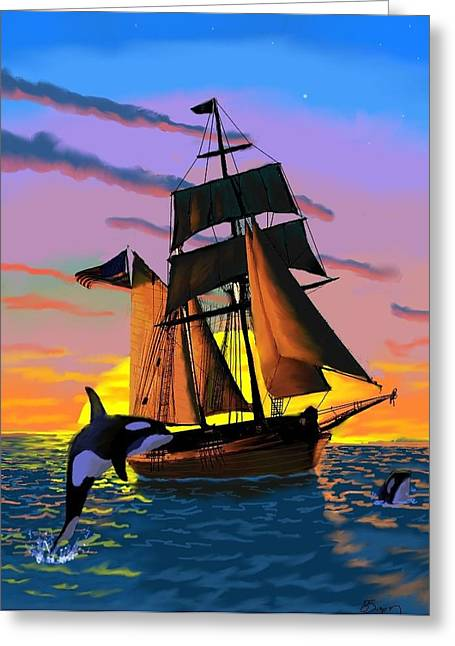 Orcas At Sunset Greeting Card by Brad Simpson