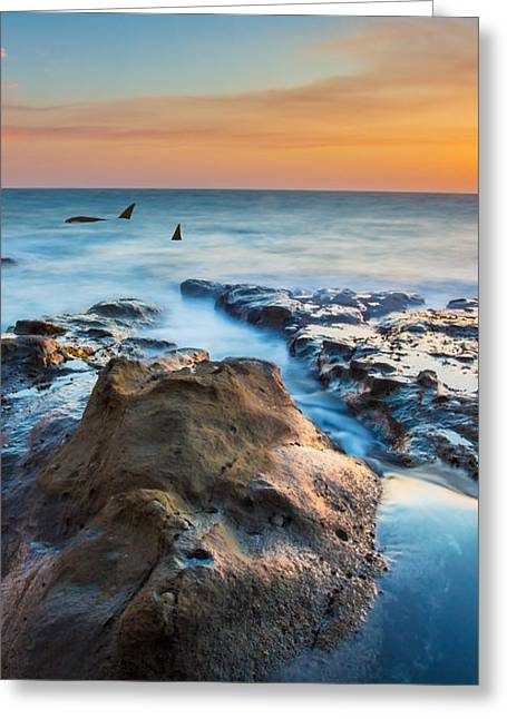 Orcas Triptych 2 Greeting Card by Robert Bynum