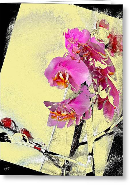 Orchid And Cream Greeting Card by Martin Jay