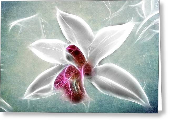 Orchid Blues Greeting Card by Fiona Messenger