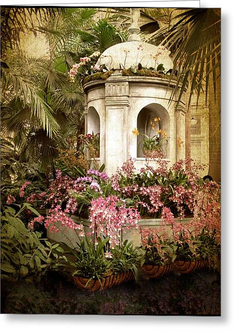 Orchid Exhibition Greeting Card by Jessica Jenney