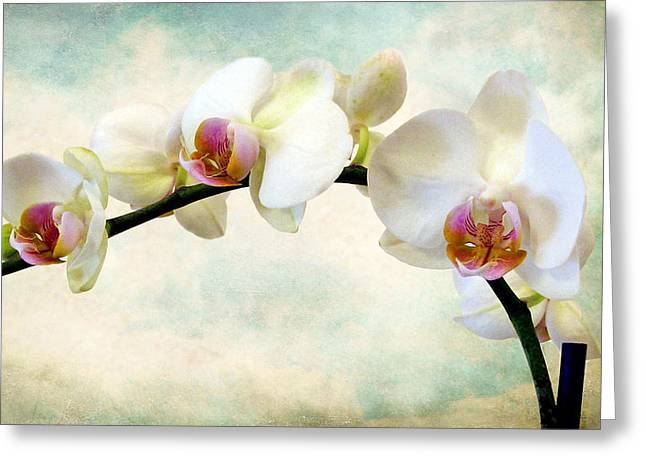 Orchid Heaven Greeting Card