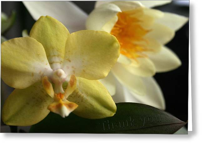 Orchid Lily  And A Reminder To Utter The Words Thank You.  Greeting Card