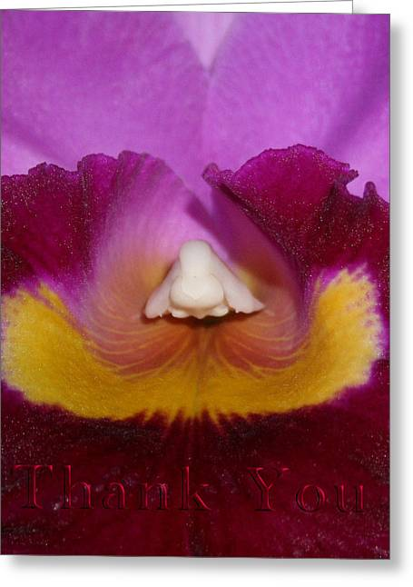Orchid Nose And A Reminder To Utter The Words Thank You. Greeting Card