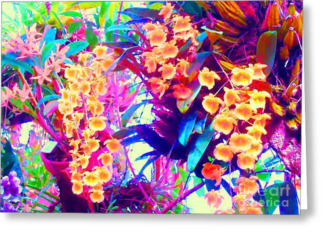Orchid Splash Greeting Card by Ann Johndro-Collins