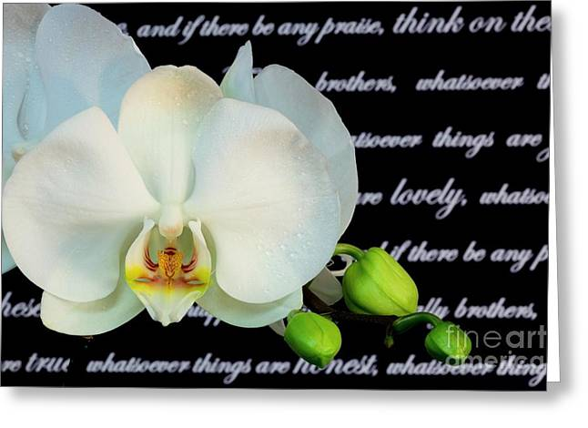 Orchids And Scripture Greeting Card by Pattie Calfy