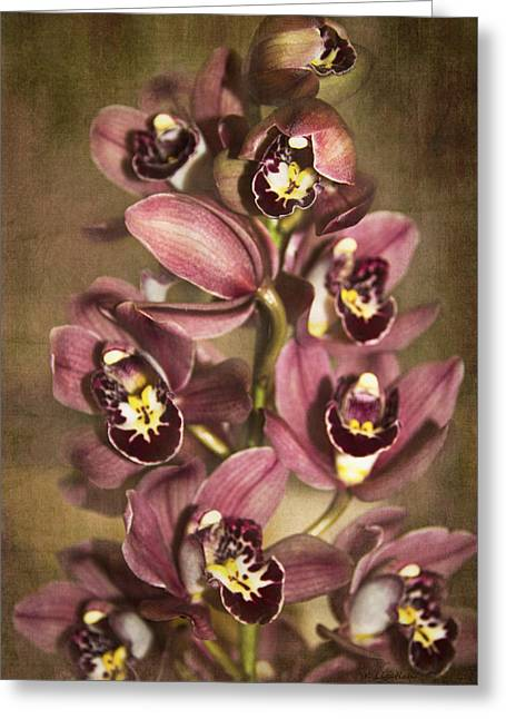 Greeting Card featuring the photograph Orchids - Cymbidium  by Kerri Ligatich