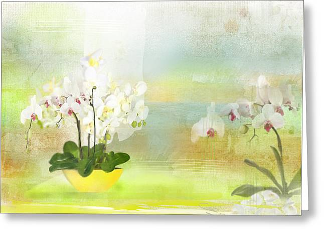 Orchids - Limited Edition 1 Of 10 Greeting Card
