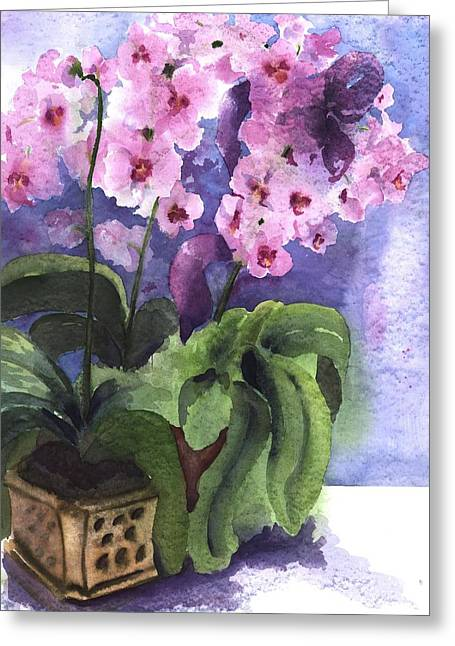 Orchids In The Window Greeting Card