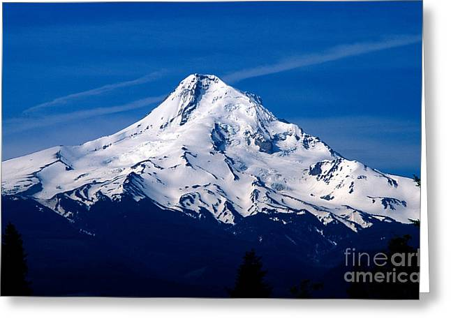 Oregon - Mt. Hood Greeting Card by Terry Elniski