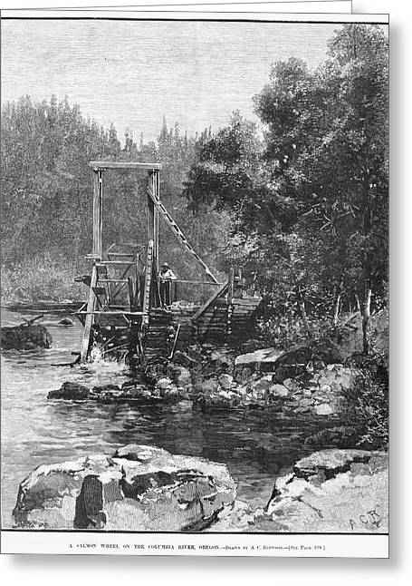 Oregon Salmon Wheel, 1883 Greeting Card