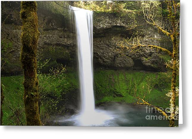 Oregon Waterfall Woodland Greeting Card by Andrea Hazel Ihlefeld
