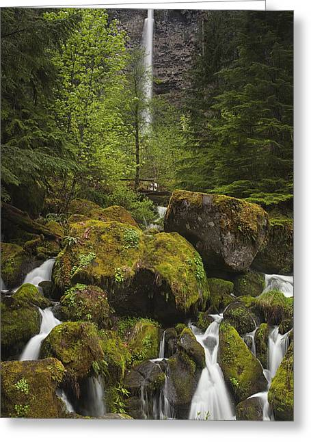 Oregon's Watson Falls Greeting Card by Andrew Soundarajan