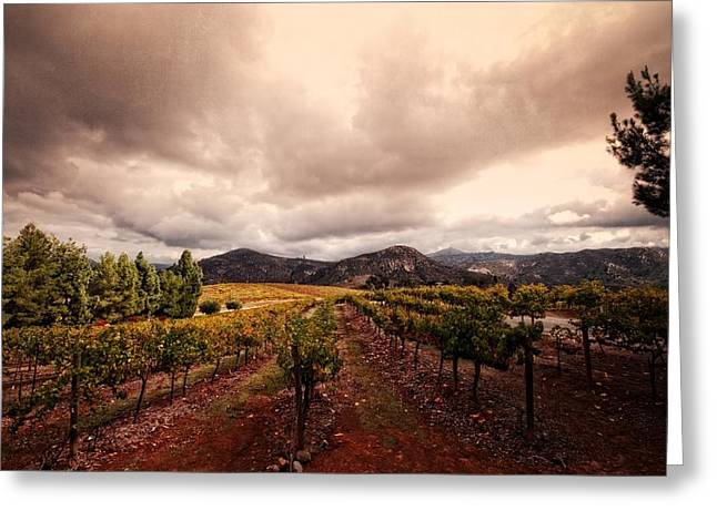 Greeting Card featuring the photograph Orfila by Ryan Weddle