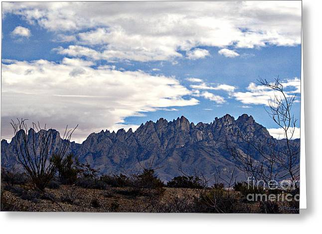 Organ Mountain Landscape Greeting Card by Barbara Chichester