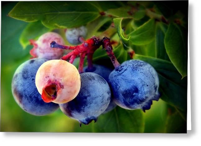 Organic Blues Greeting Card by Karen Wiles