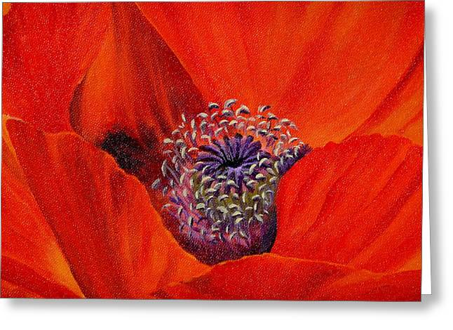 Oriental Poppy Greeting Card by Jo Appleby