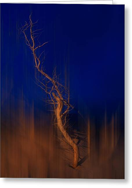 Origin Of Man - A Tranquil Moments Landscape Greeting Card
