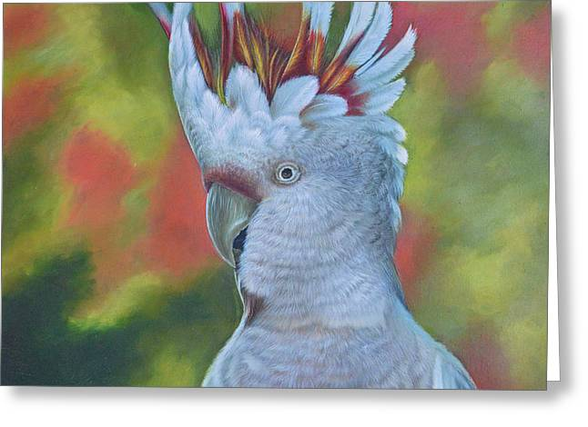 Original Animal Oil Painting Art -parrot #16-2-5-17 Greeting Card