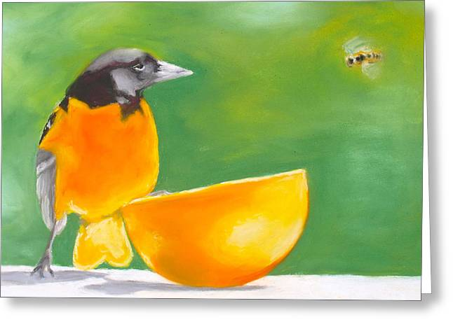 Oriole And The Orange Greeting Card by Faythe Mills