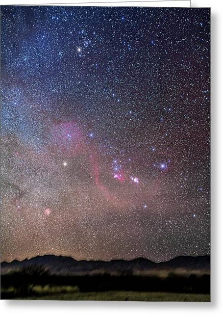 Orion And Taurus Rising Greeting Card by Alan Dyer