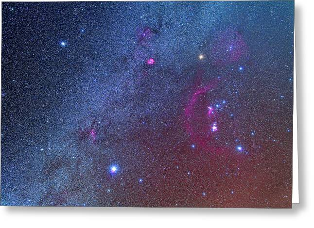 Orion And The Winter Triangle Greeting Card by Alan Dyer